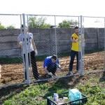 Voluntariat Petrom @ Baicoi (7)